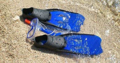 Swim Fins Snorkeling Sea