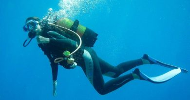 Best Wetsuits for Diving and Surfing