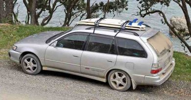 The 6 Best Paddle Board Roof Racks of 2021