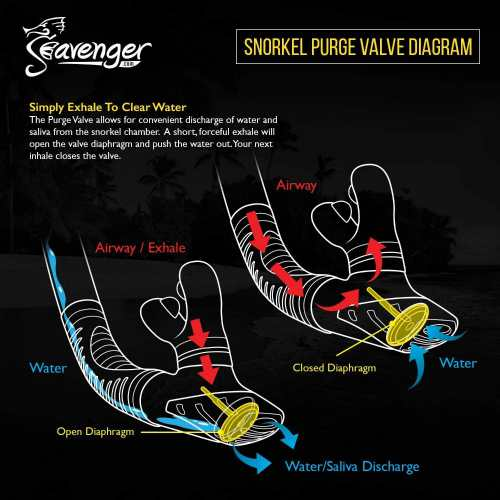 Seavenger-Diving-Snorkel-Trek-Single