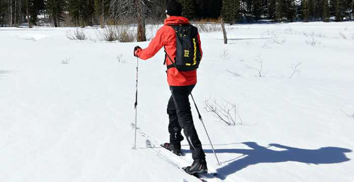 Best Cross Country Skis