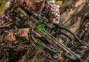 The 5 Best Crossbows of 2019