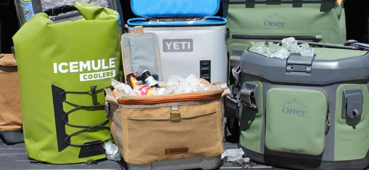 Best Soft Sided Cooler Bags